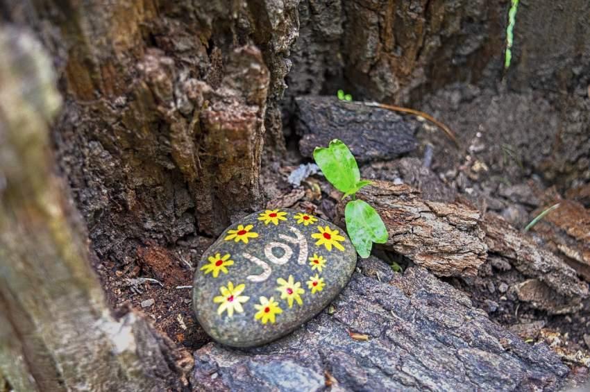 piedra pintar