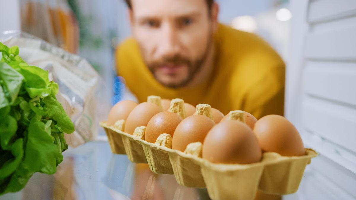 hueveras de diez huevos