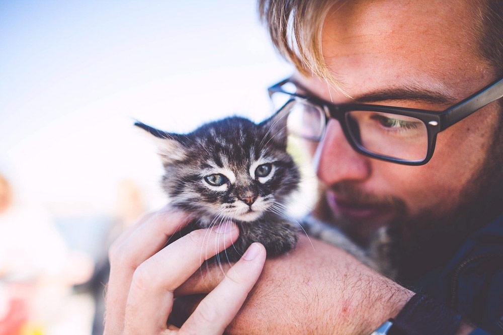 elegir una buena mascota