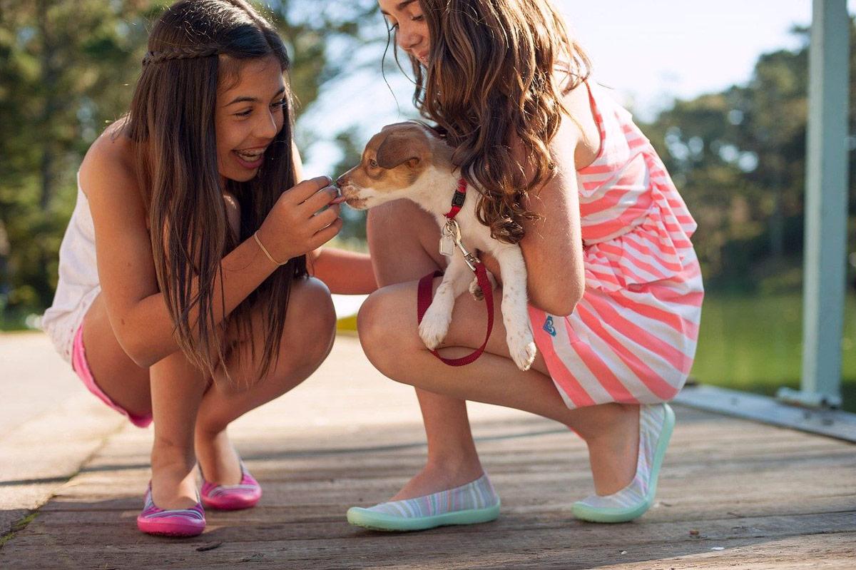 ventajas de tener una mascota