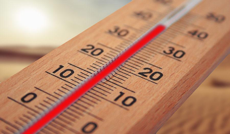 recomendaciones para ola de calor