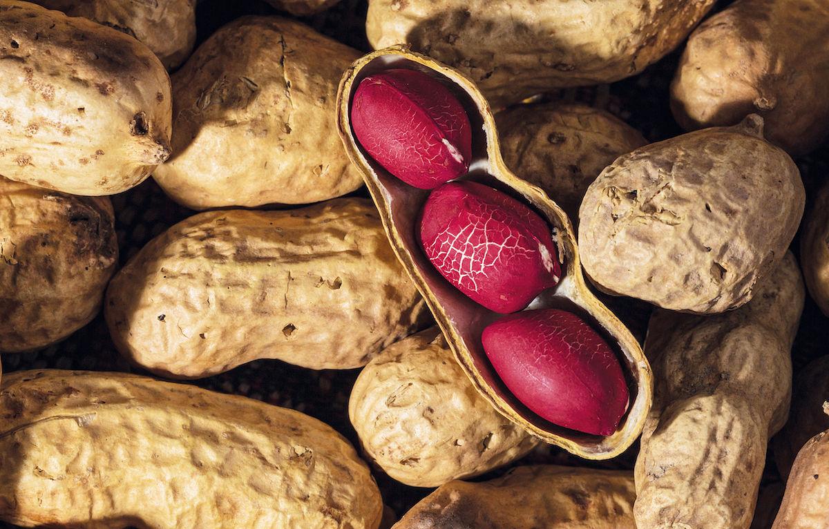alergia a cacahuete y frutos secos