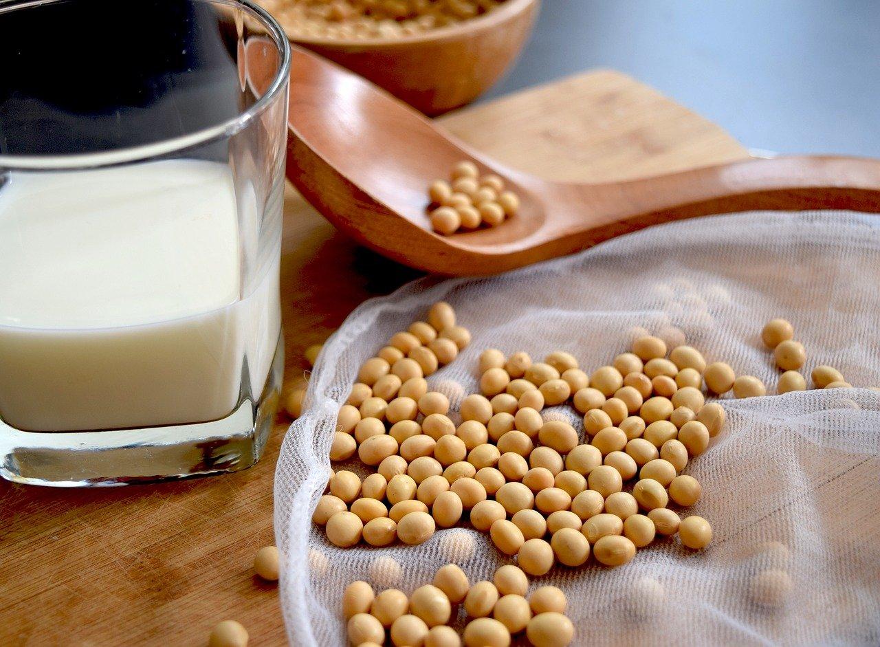 consumo de soja y salud