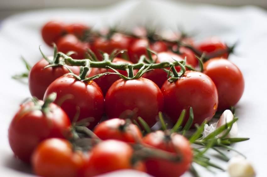 tomate verdura fruta