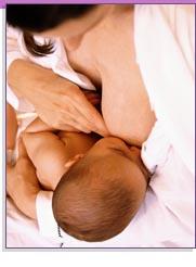 Fundamentos de la lactancia materna