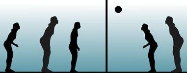 Boleibolari buruzko informazioa