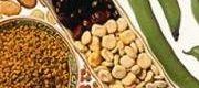 Cerealesylegumbres pk