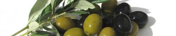 Aceitunas gr