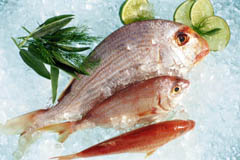 Cuestionario imagenes 2.o - Página 2 Pescado