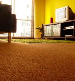 Limpiadores de moquetas higiene profunda para el suelo - Moqueta suelo ...