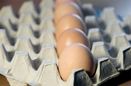 Nueva herramienta para detectar huevos no aptos