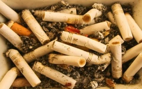 Tabaco as da a al medio ambiente taringa for Materiales que componen el suelo