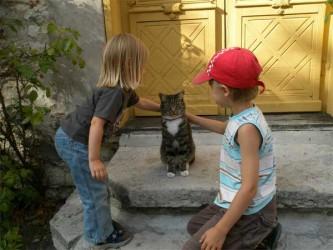 La muerte del gato c mo afrontar el momento eroski for Como evitar los gatos en el jardin