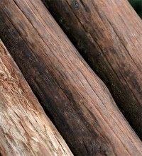 Distintos tipos de madera eroski consumer - Tipos de barnices para madera ...