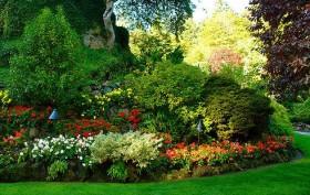 Jard n decorativo o natural cu l es m s conveniente for Estanques naturales para jardin