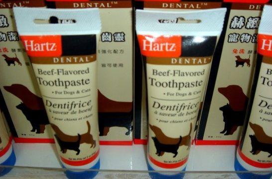 Pasta de dientes para eliminar el sarro del perro eroski for Pasta para quitar gotele precio