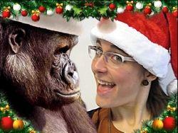 Felicitaciones Navidad Internet.Felicitar La Navidad Por Internet Eroski Consumer