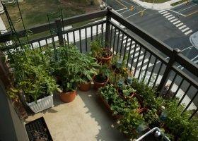 Crear un jard n en la terraza eroski consumer - Jardines en la terraza ...