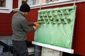 Huertos urbanos verticales eroski consumer for Como se realiza un huerto vertical