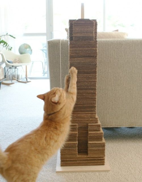 C mo hacer un rascador para gatos con cart n - Casas para gatos baratas ...