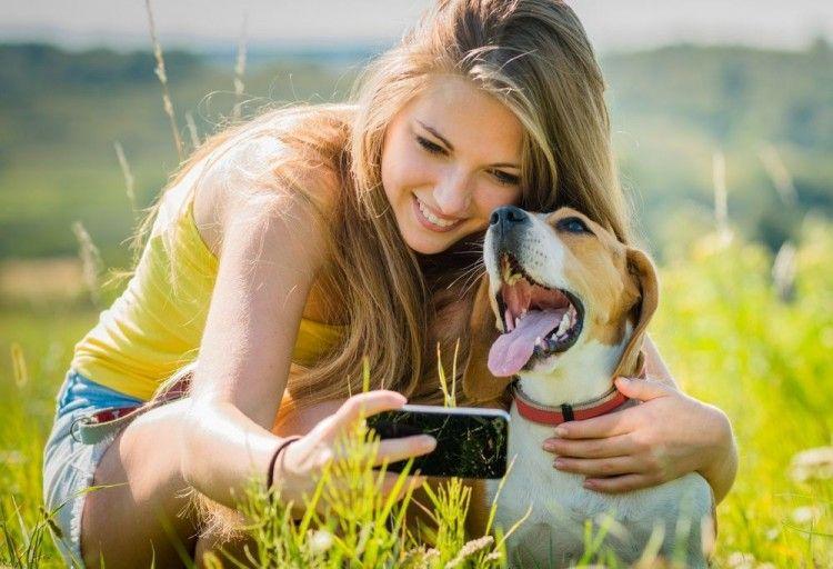El veterinario se cuela en el móvil.. El objetivo es ayudarnos a cuidar de perros y gatos, reducir su estrés y darnos consejos para que lleven un estilo de vida más saludable.