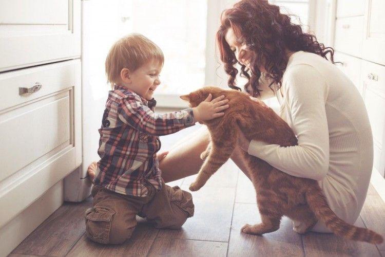 Felinos con niños