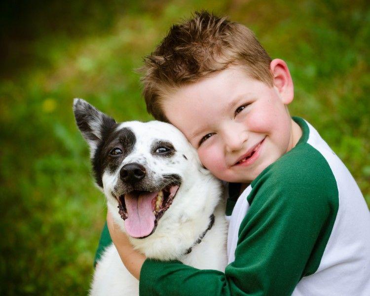 Perros y gatos calman a los niños